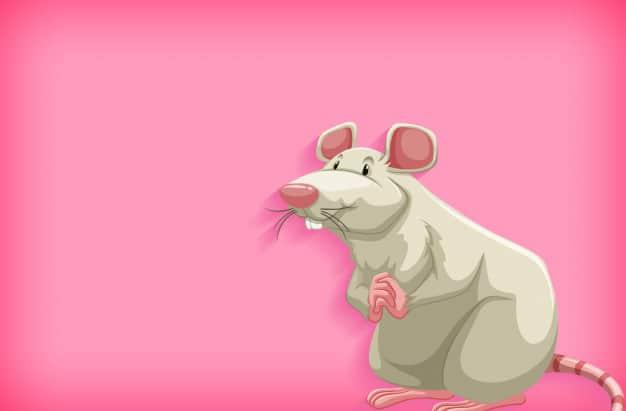 איור של עכבר