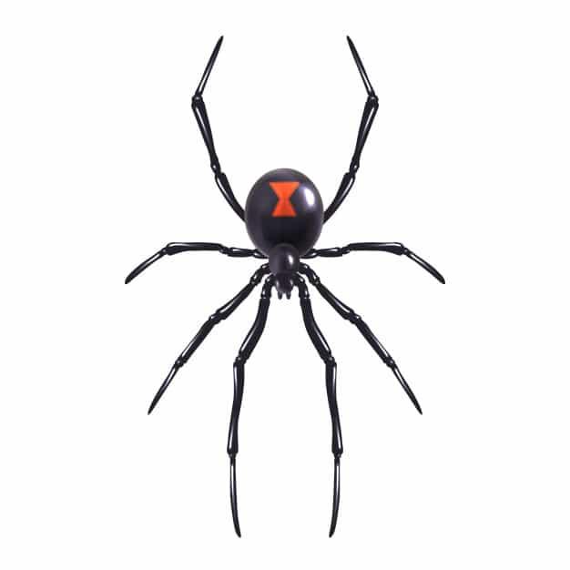 הדברת עכביש